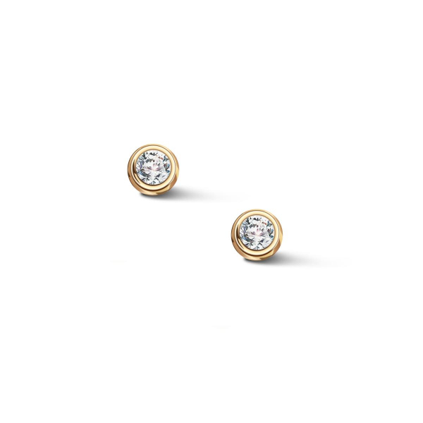Zdjęcie Zodiak - kolczyki srebrne pokryte złotem z cyrkoniami #1